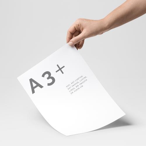 Print A3+